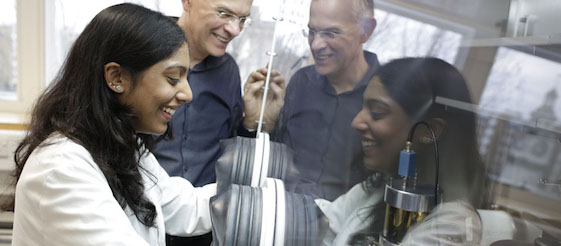 Postgraduate student working in laboratory